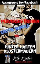 Perverses Treiben hinter harten Klostermauern - Erotik Bundle: Aus meinem Sex-Tagebuch: 6 x schmutzige Erotik ! Brandneu, bisher unveröffentlicht und unzensiert ab 18 - 1